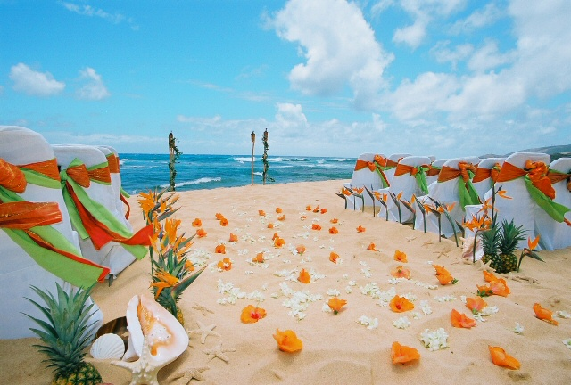 Beach Wedding Decor Decorations